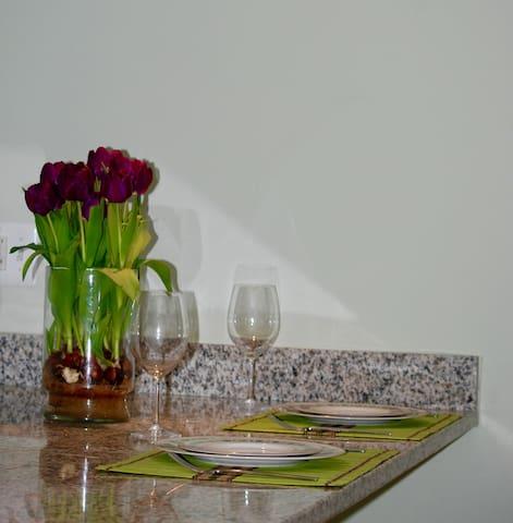 Full 1 BR apartment in English basement - Washington - Appartamento