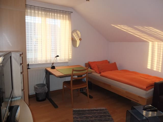 Single Room with fast WIFI and TV - Dornbirn - Apartment