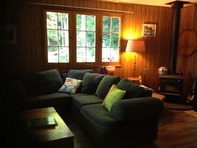 Vintage Haliburton Lakefront Cottage Escape - Algonquin Highlands - Kabin