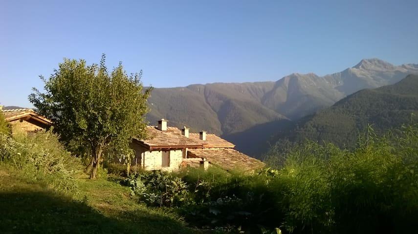 Agriturismo Il Mausset - Villar Pellice - Apartament