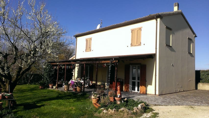 Relax in campagna, con belle viste panoramiche - Monte San Vito - Casa