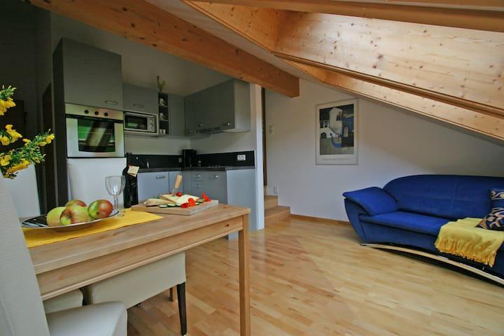 """Wälderhaus Apartment """"Dahlie"""" - Schwarzenberg - Departamento"""