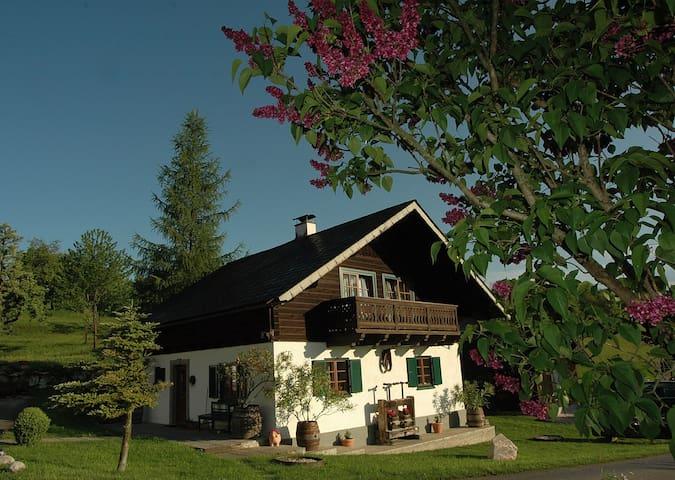 Ferienhaus am Attersee mit eigenen Badestrand - Buchenort - Huis
