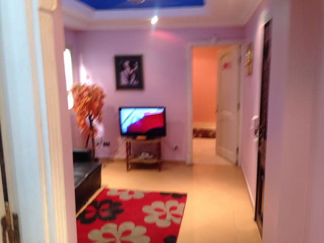 Fully furnished apartment for rent in cairo egypt - Mit Akaba