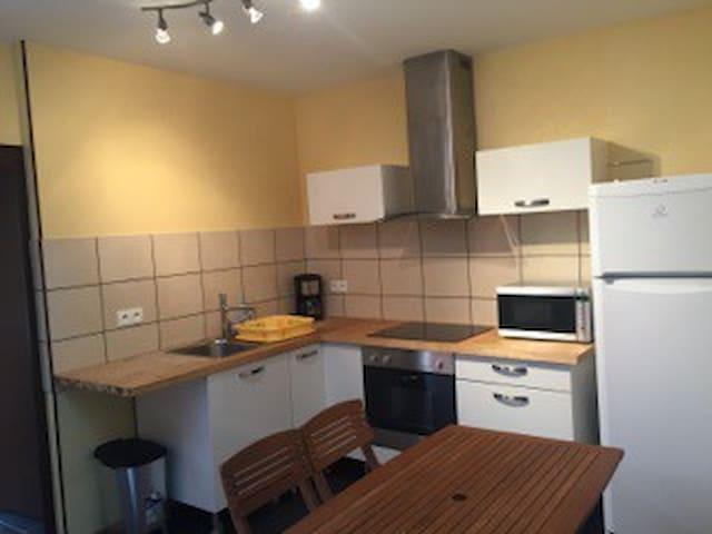 Appartement spacieux avec vue sur Loire - Roanne - Lägenhet