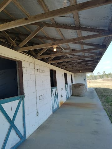St. John's river horse farm with stables - Astor - Appartement