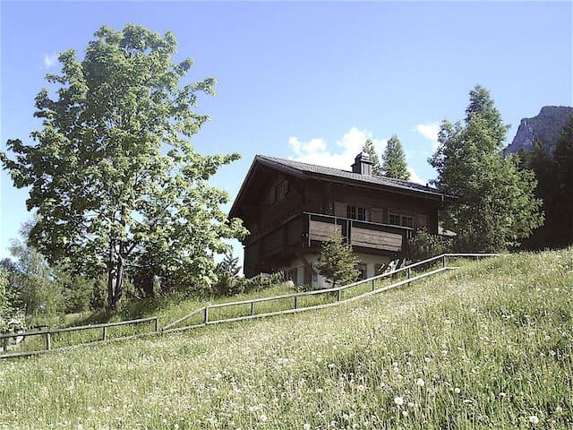 Mountain Chalet in Liechtenstein - Gaflei - Dağ Evi