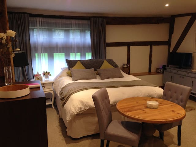 Stunning Twin/Super-king bedroom - Taplow - Hus