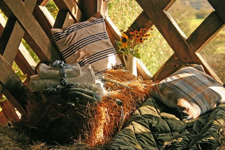 Hayloft-Guesthouse Novak - Sadinja Vas pri Dvoru - Diğer