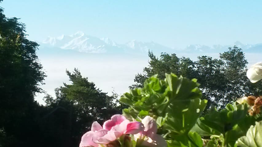 Self contained apartment in the Swiss Alps - Arzier-Le Muids - Leilighet