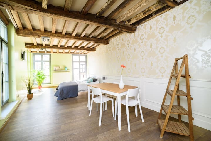 Bright apartment in historic townhouse - Gent - Byt