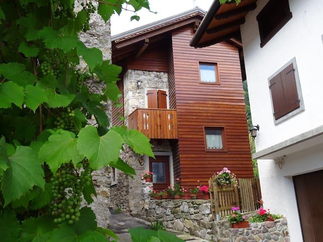 Edificio rurale tipico della montagna carnica - Arta Terme - Maison