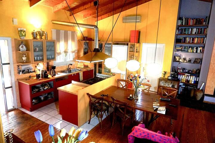 House with an Artistic Taste - Alimos - Villa