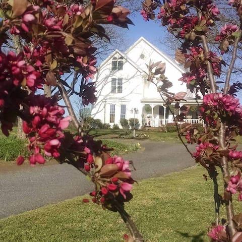 "Seven Oaks Farm-""Nostalgia"" - Forest City - Maison"