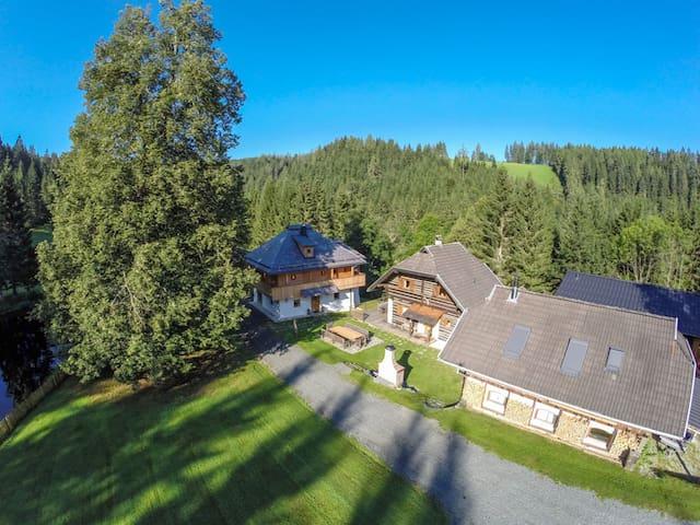 Holiday alp Kreuth 6 – house Edelweiss (total) - Sankt Veit an der Glan - Rumah