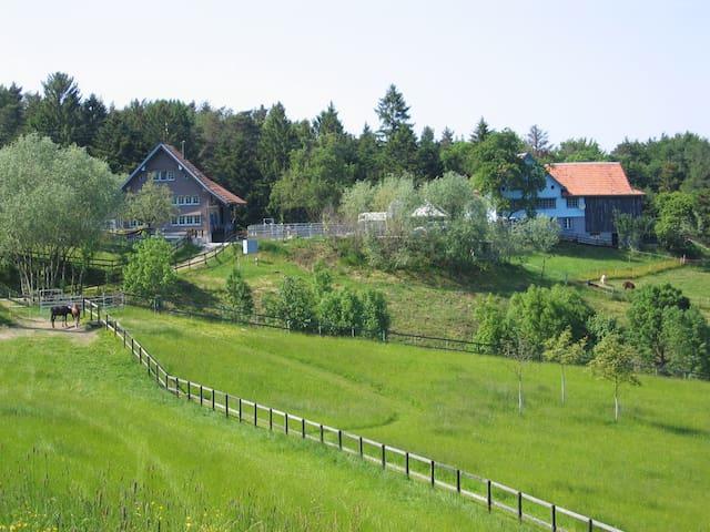 Ferien mit Tieren auf Erlebnis- & Therapiehof - Sankt Margrethen - Lyxvåning
