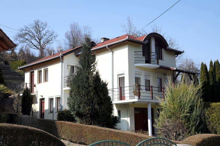 Biro Apartman - Zalakaros - Departamento