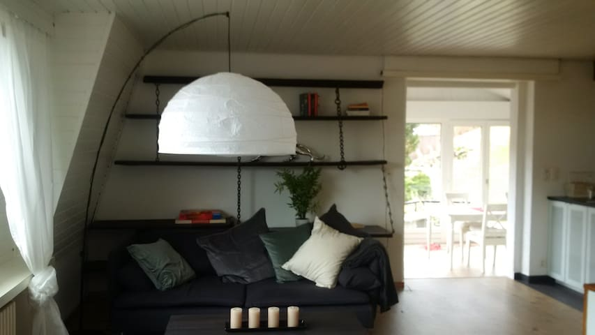 Large modern home with garden in a charming house - Liesberg - Hus