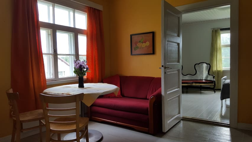 Wooden house near center, Welcome! - Imatra - Appartement