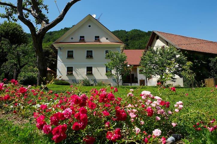 Slovenia FARM STAY Zelinc - B&B - Cerkno - Bed & Breakfast