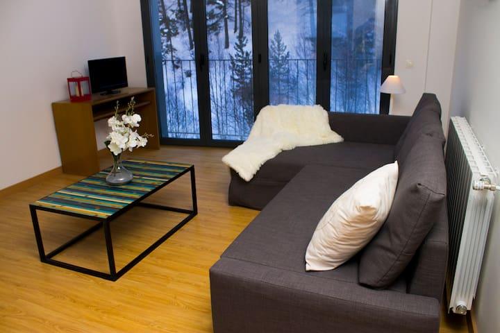 2 bedroom apartment in Canillo - Canillo - Departamento