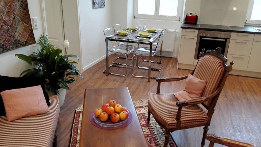 """Moderne 2-Z. Wohnung in """"Altem Zollhaus"""" - Klettgau - Departamento"""