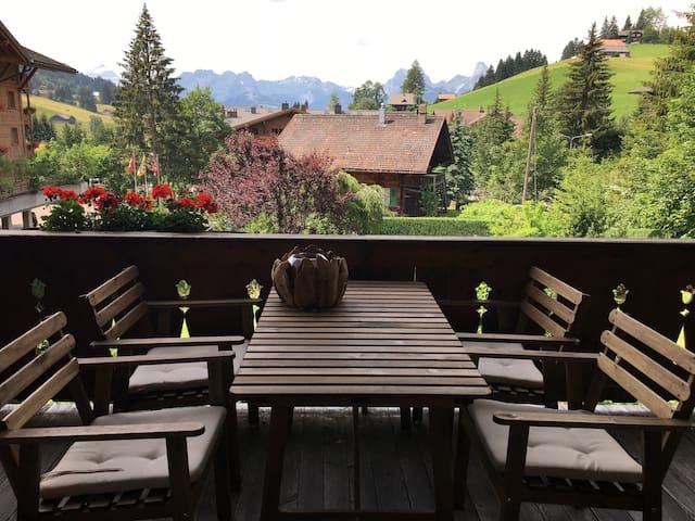 Top luxurious apartment near Gstaad - 薩嫩(Saanen)