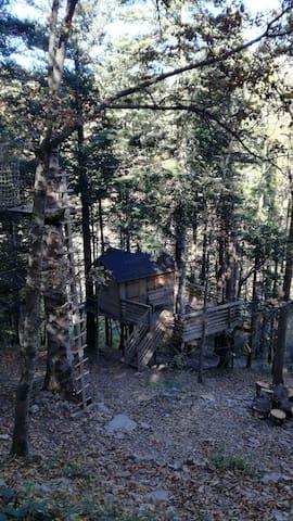 Cabane dans les bois - Épicéa - Prats-de-Mollo-la-Preste - Oda + Kahvaltı