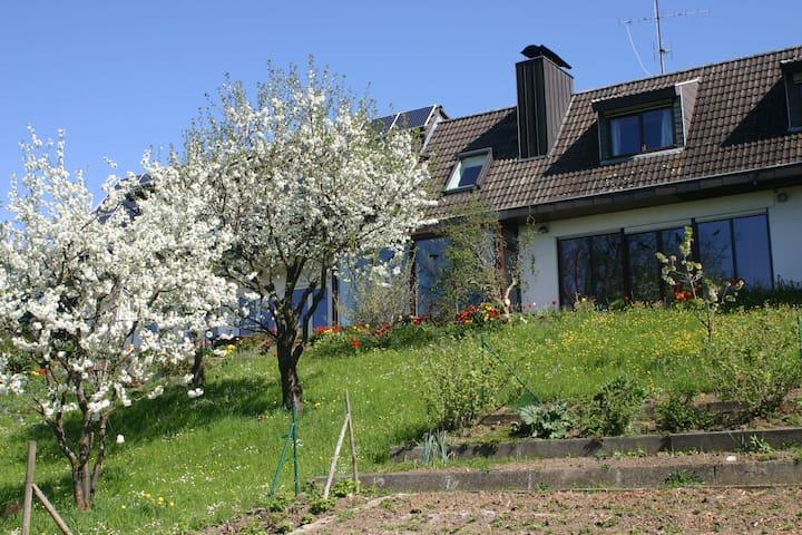 Ferienwohnung am Sonnenhang - Tengen-Büßlingen - Appartement