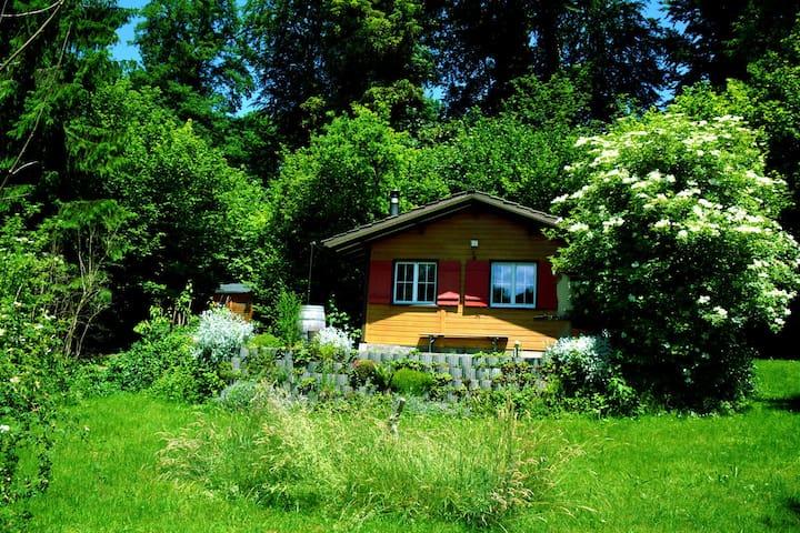 Ferienhaus mitten in der Natur - Jonschwil - Casa