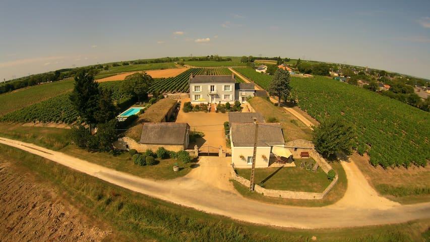 Vineyard Cottage, - Martigné-Briand - Ev
