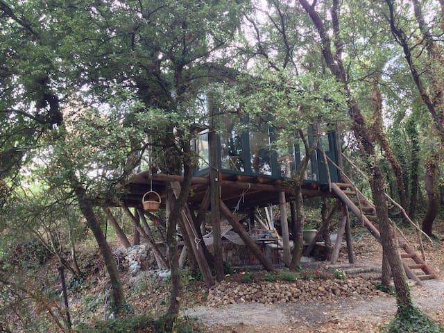 The Tree house in Ano Korakiana - Άνω Κορακιάνα