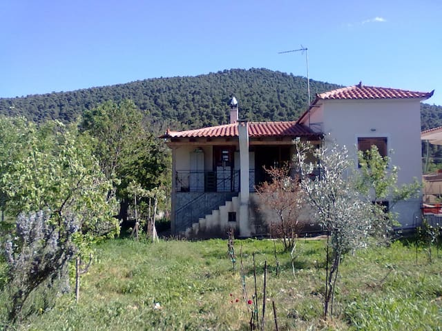 Traditional House in the mountain with big garden - Sofiko - Casa