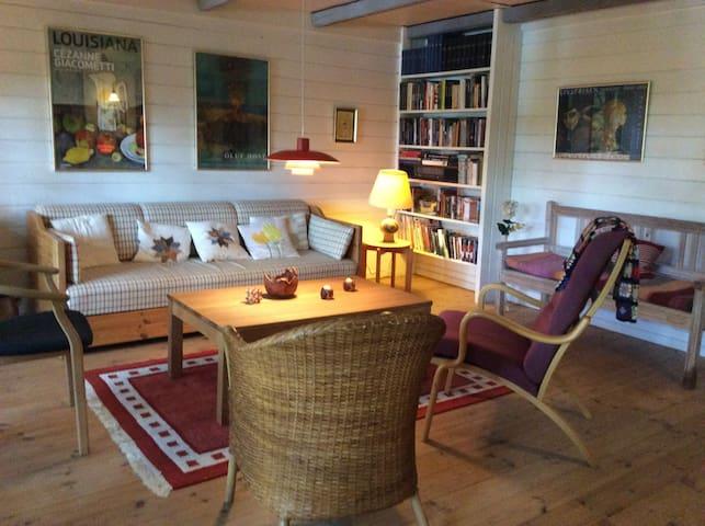 Fredfyldt sommerhus ved Øjesø - Aars - Houten huisje
