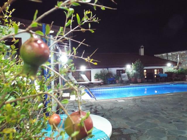 The Pomegranate's House - Limassol - Villa