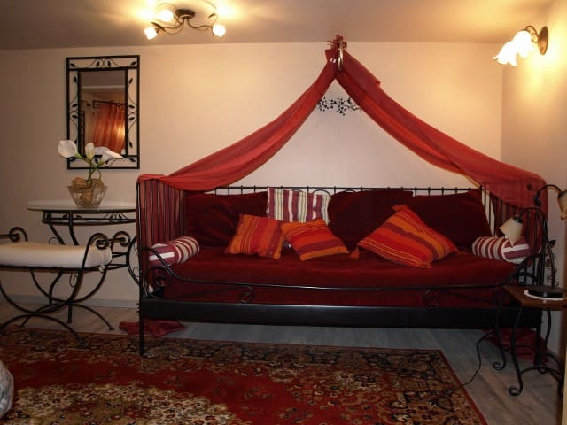 Appartement Coquelicot dans la vieille ville Thann - Thann - Apartament