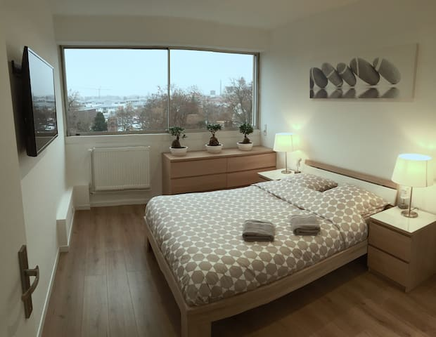 Colmar - Spacious and comfortable 3 rooms of 75m2 - Colmar