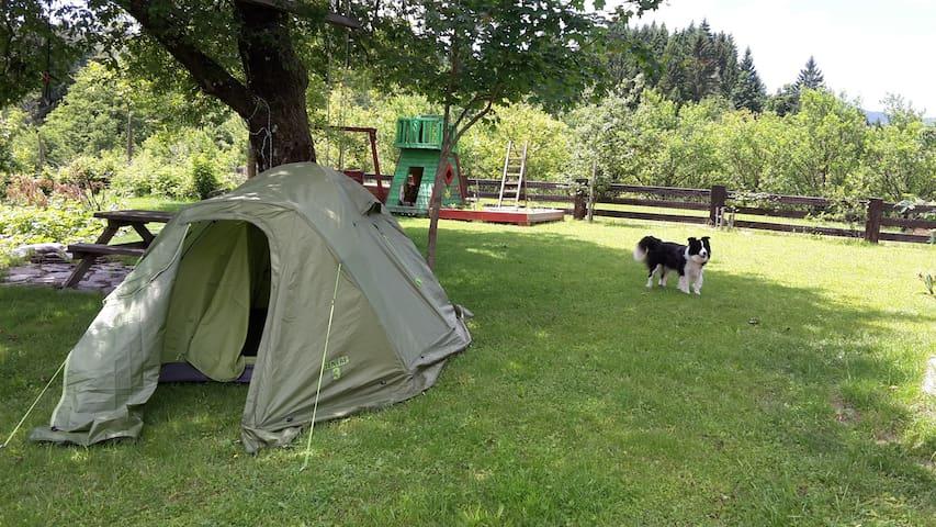Camping on the green garden - Belsko