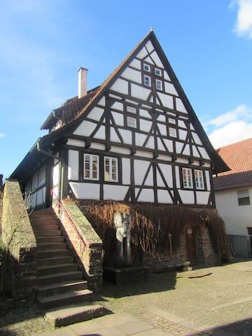 Traumwohnung auf dem Weingut in Keltern-Dietlingen - Keltern - Daire