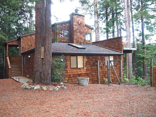 Canyon View Cabin in the Redwoods - Gualala - Casa