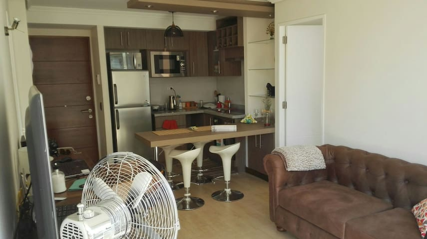 New Room with Private Bath in Downtown Area - Santiago - Leilighet