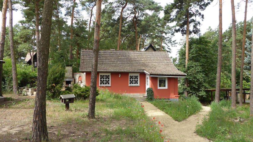 Ferienhaus in der Dübener Heide - Bad Düben - Hus