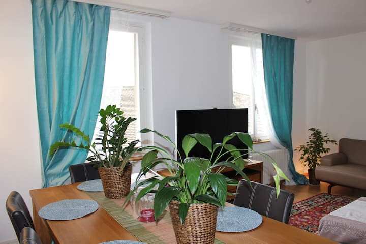 Central best private room near university ETH - Zurych - Apartament