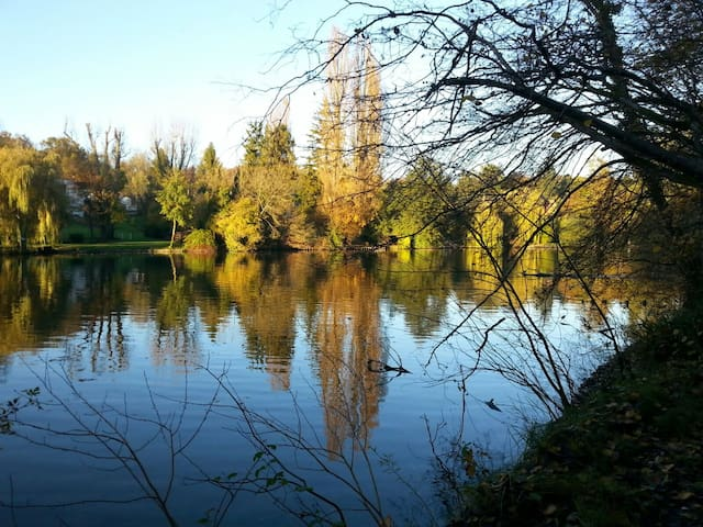 Au bord de l'eau au coeur d'un parc - Choisy-au-Bac - Bed & Breakfast
