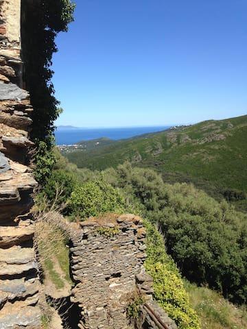 Bel appartement vue sur mer et maquis du Cap Corse - Rogliano - Leilighet