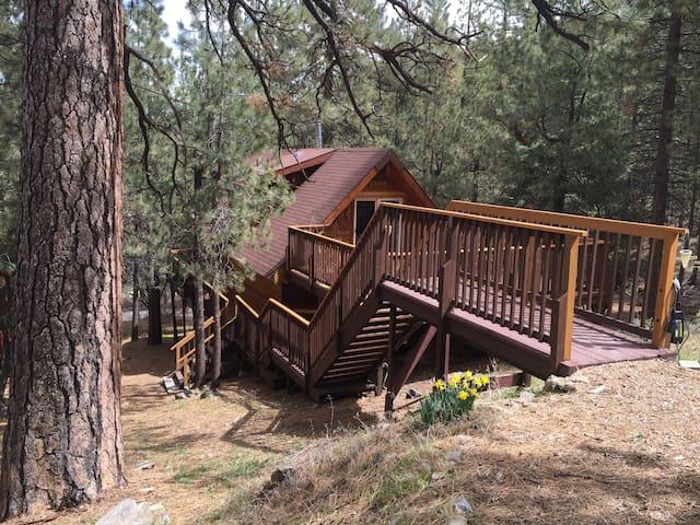Log cabin 90 min. from LA - Pine Mountain Club - Casa