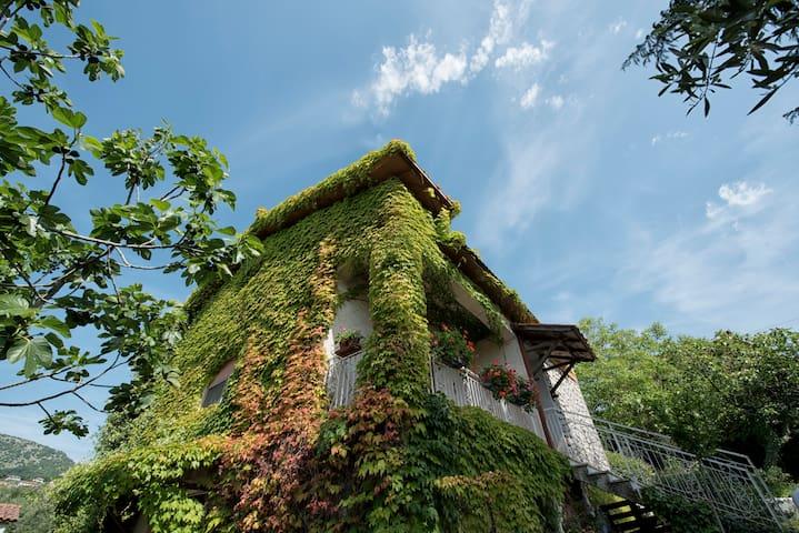 """Casale bambù"" Bed and Trekking Guide - Rocca Massima - Villa"