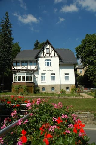 Helle Dachgeschosswohnung im Kurbad - Bad Elster - Departamento