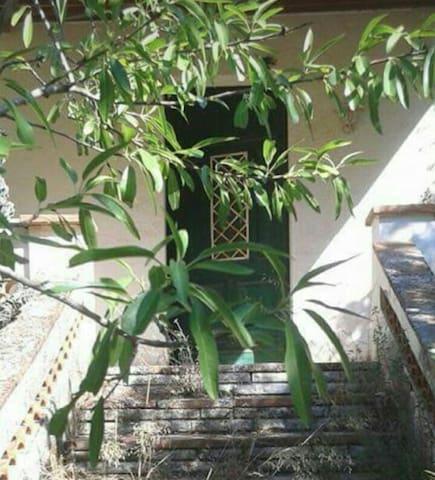 NOU! Casa/jardí a Camp de Tarragona -    PUIGPELAT - Casa