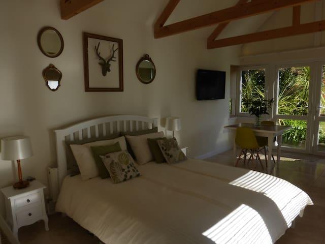 Spacious en-suite sleeps 2, private entrance - Penzance - Bed & Breakfast